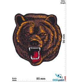 Bear Braunbär - Grizzly - Kopf -HQ
