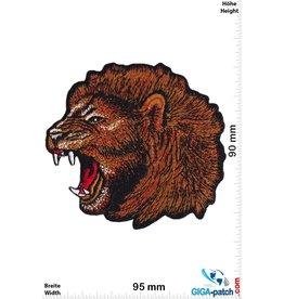 Löwe - Lion  Kopf schräg - HQ