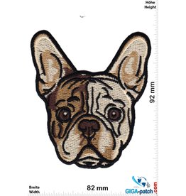 Hund French Bulldog Puppy Head - HQ