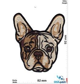 Hund French Bulldog Puppy Head - HQ