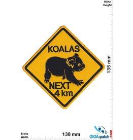 Fun Koalas - next 4 KM - Australia - BIG
