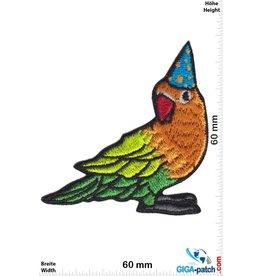 Fun Papagei - Zauberer
