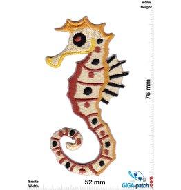 Seepferdchen Seahorse - brown