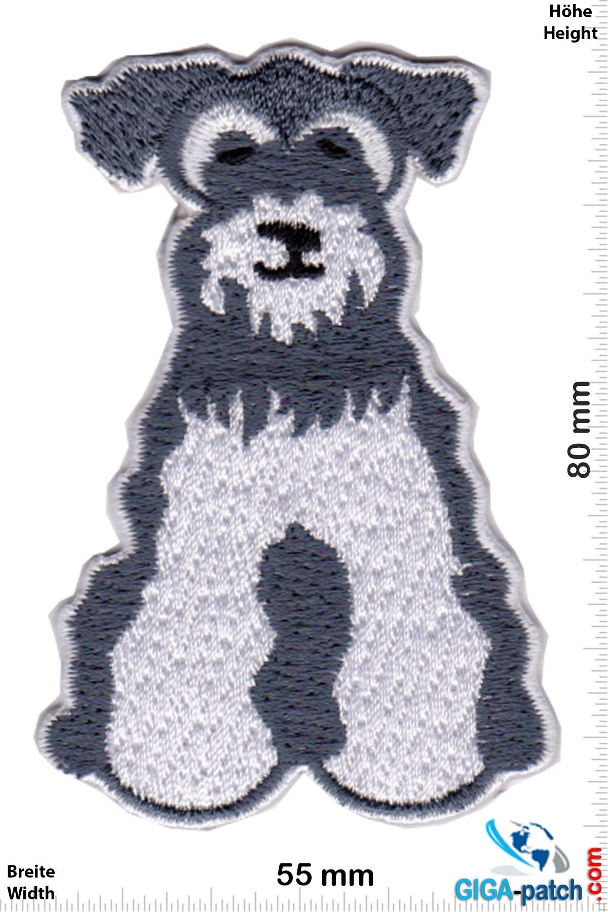 Hund Schnauzer - Hund