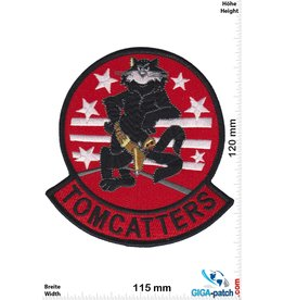 U.S. Navy Navy Fighting Squadrons-  TOMCATTERS -  VF, VC, & VFP- HQ