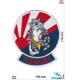 U.S. Navy USN F-14 TOMCAT F-14 FIGHTER SQN JAPAN TOMCAT- HQ
