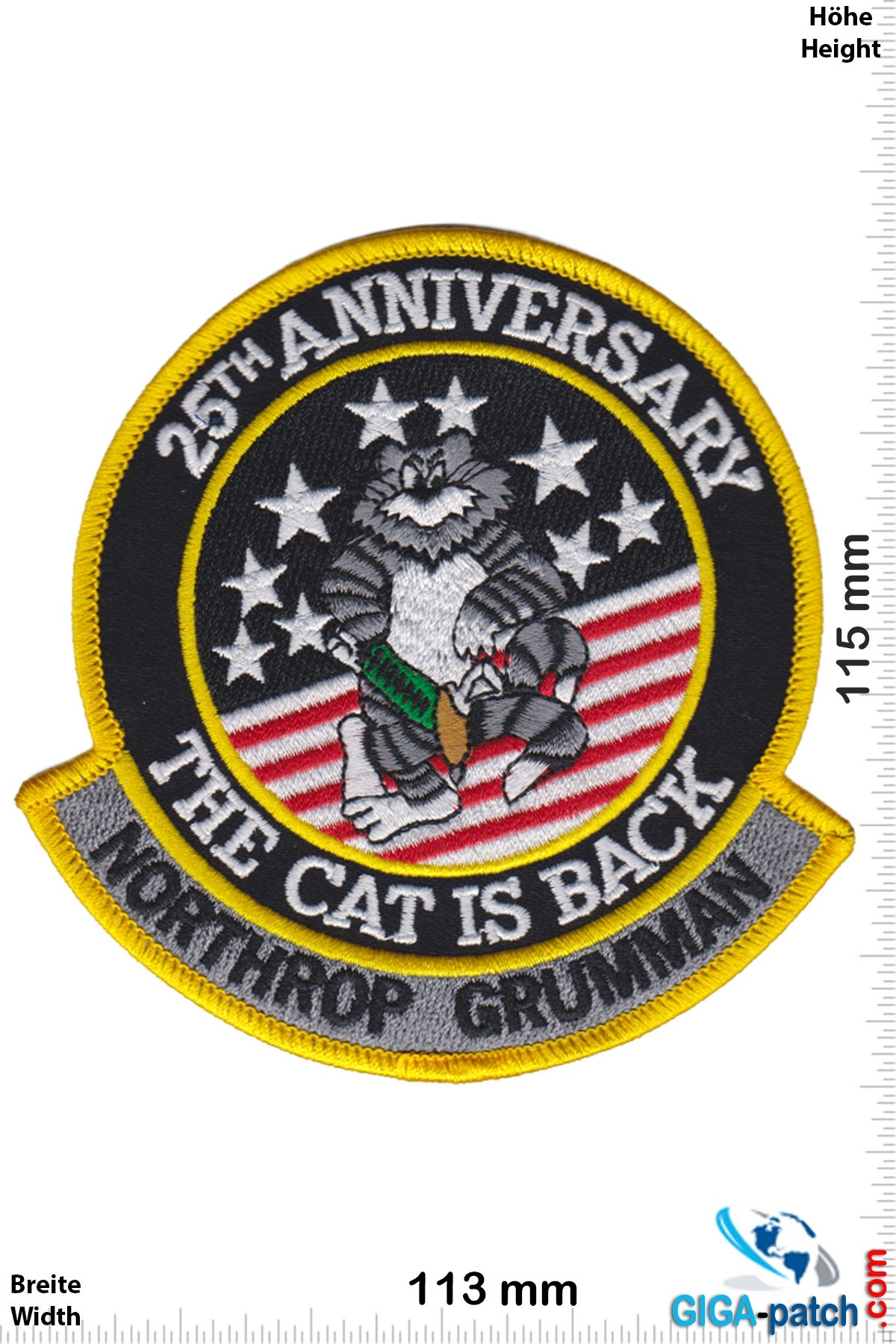 U.S. Navy F-14 - 25th Anniversary - the Cat is Back - Northrop Grumman- HQ
