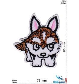 Kleiner Fuchs - Little Fox