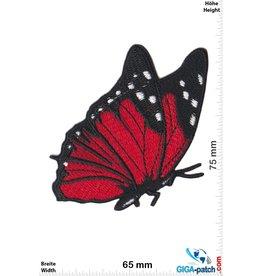 Schmetterling Schmetterling - fly -rot schwarz