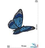 Schmetterling Butterfly - fly -blue black