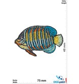 Fisch Fish - sea fish - tropical - green blue