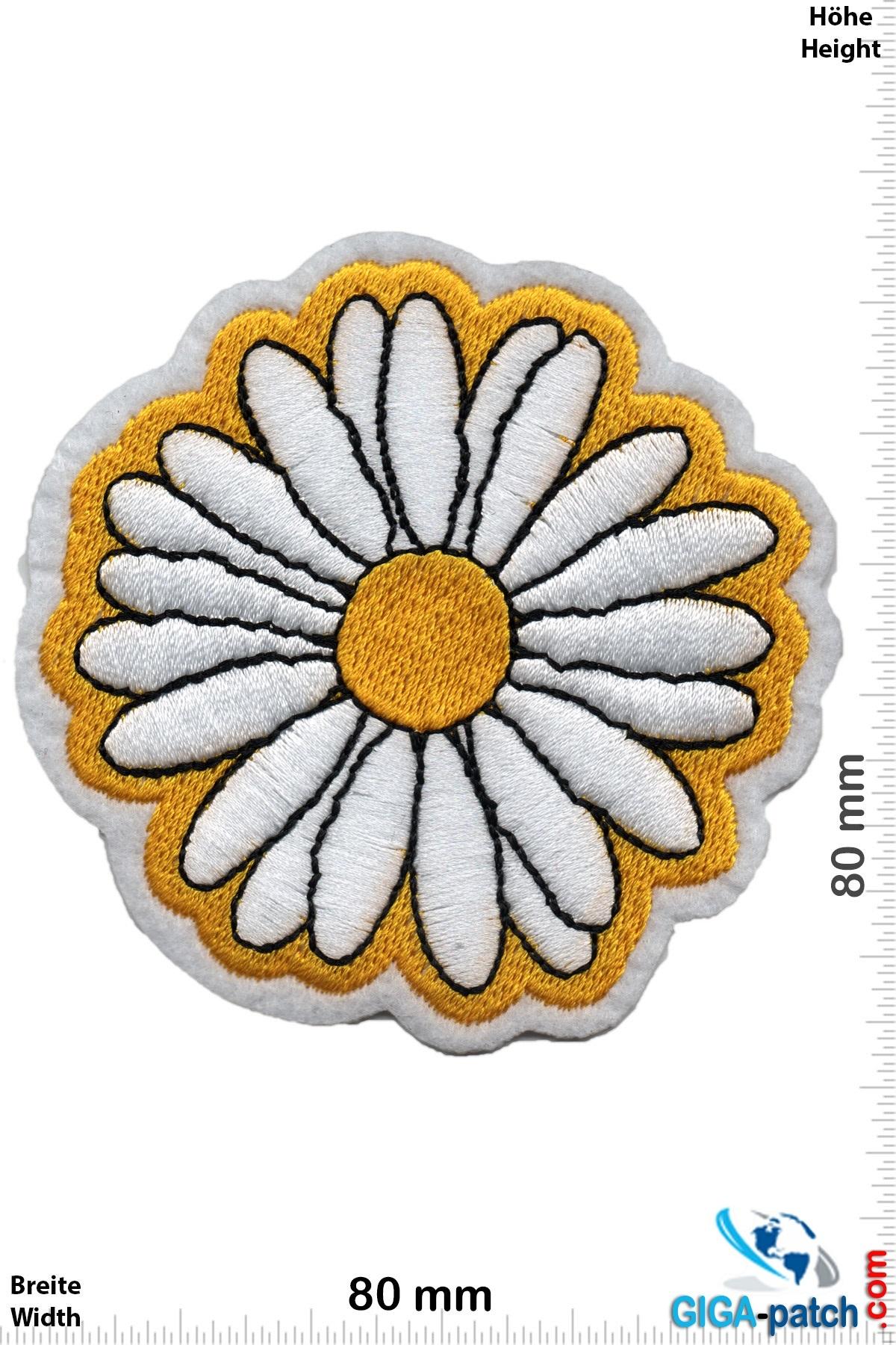 Margerite - Flower