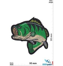 Fisch Barsch - Angeln Fischen - grün