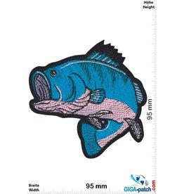 Fisch Barsch - Angeln Fischen - blau