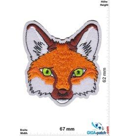Fox - head