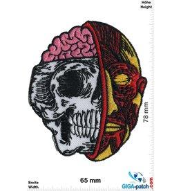 Totenkopf Halber Totenkopf - Halb Muskel - Gehirn