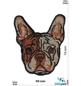 Hund Französische Bulldogge-Welpen Kopf - small