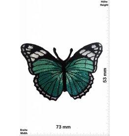 Schmetterling, Papillon, Butterfly Butterfly  -bluegreen