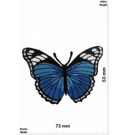 Schmetterling, Papillon, Butterfly Schmetterling - blau
