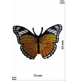 Schmetterling, Papillon, Butterfly Butterfly - yellow