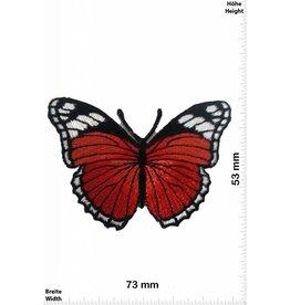 Schmetterling, Papillon, Butterfly Butterfly - red