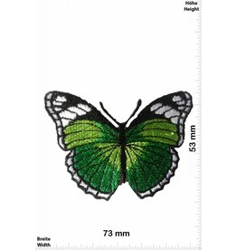 Schmetterling, Papillon, Butterfly Butterfly -  green