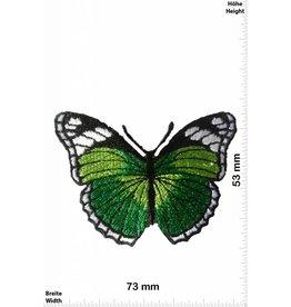 Schmetterling, Papillon, Butterfly Butterfly -  green