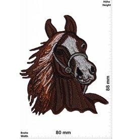 Pferd Pferd - Pferdekopf -  braun