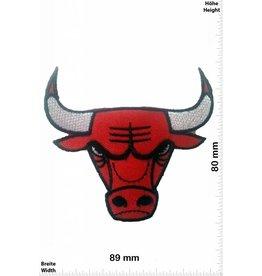 Chicago Bulls   Chicago Bulls