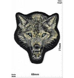 Err:520 Wolf -Wolfskopf - Böser Wolf