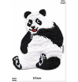 Pandabär Panda Bear - sit - HQ