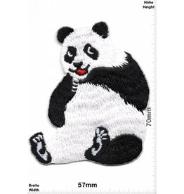 Pandabär Pandabär - Panda Bear - sitzend - sit - HQ Tier