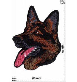Schäferhund Hund - Schäferhund  - Animal
