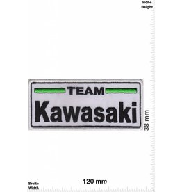 Kawasaki Team Kawasaki  - white black