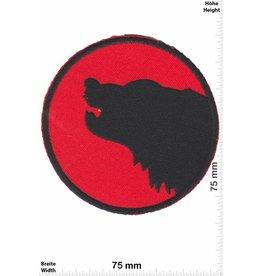 Bär Black Bear