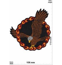 Eagle Eagle - Fire