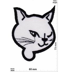 Cat White Cat