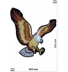 Eagle Flying Eagle -  29 cm