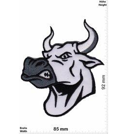 Buffalo  Angry Buffalo