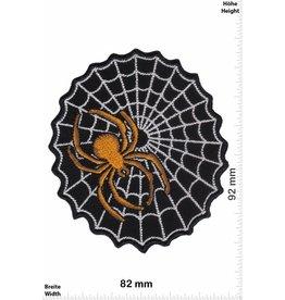 Spinne Gold Spinne mit Netz