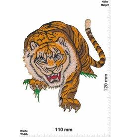 Tiger Big Tiger  - HQ