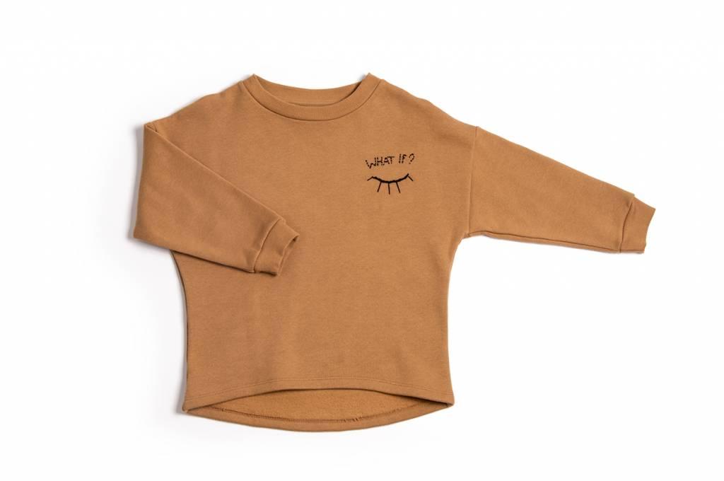 Terracotta Pullover