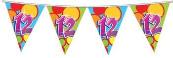 Feestfestijn Vlaggenlijn 12 jaar - 10 meter