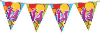 Feestfestijn Vlaggenlijn 14 jaar - 10 meter