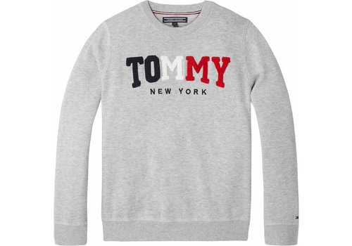 Tommy Hilfiger trui tommy
