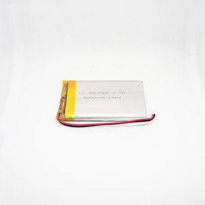 Lithium Ion Polymer Battery 6000 mAh