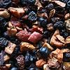 FT Herbstfrüchte