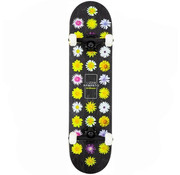Birdhouse Stage 3 Armanto Flower Skateboard