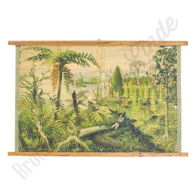 Vintage schoolplaat jungle