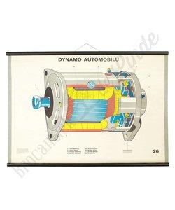 Motorische schoolplaat 'Dynamo'